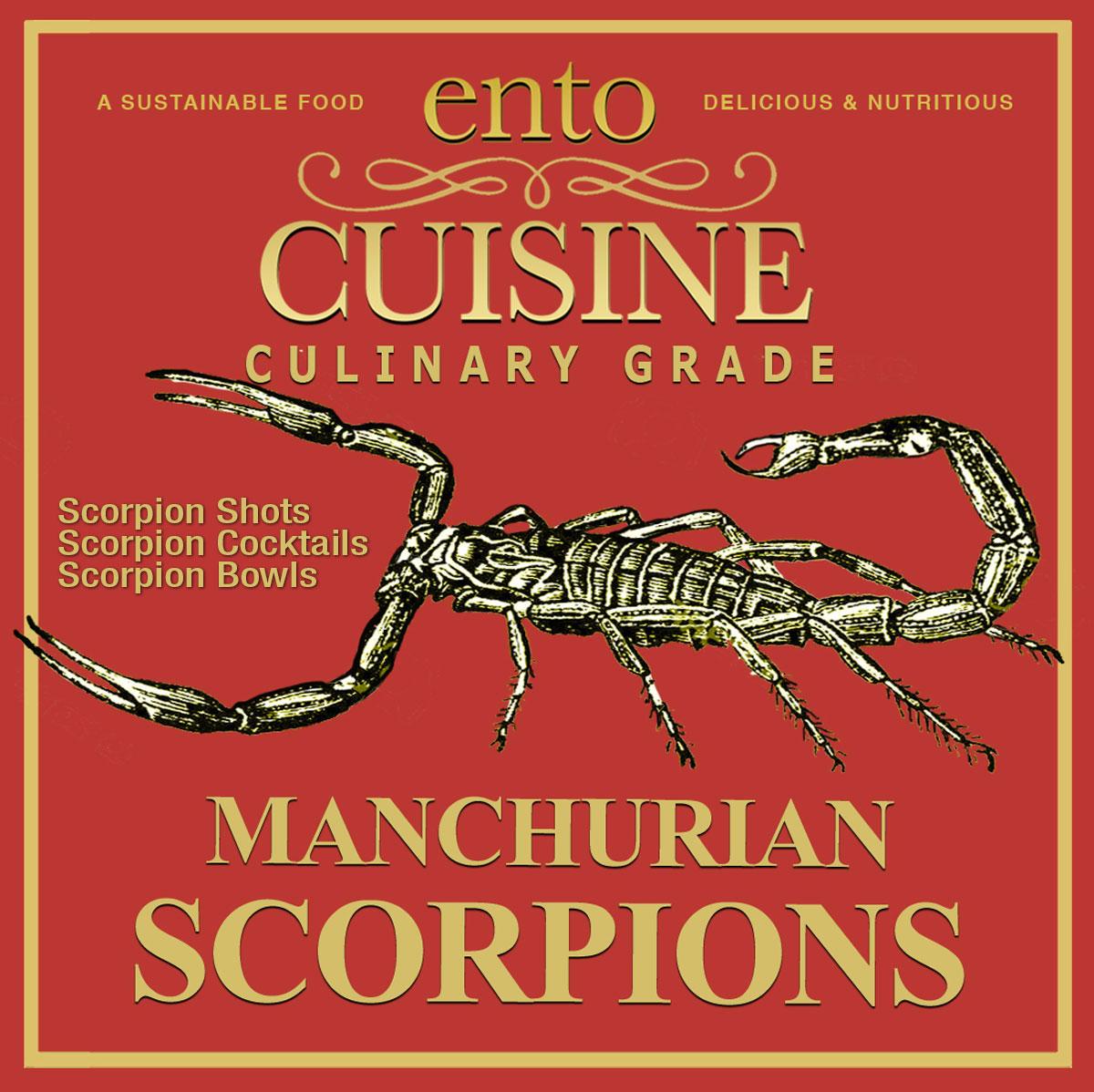Scorpions for Bars